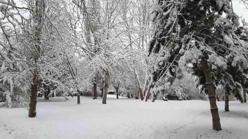 neige-02-2018_1.jpg