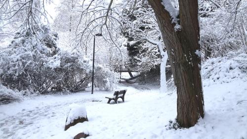 neige-02-2018_4.jpg