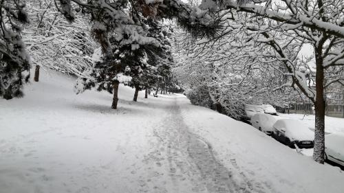 neige-02-2018_3.jpg
