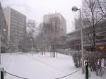 fontenay-neige-03.jpg